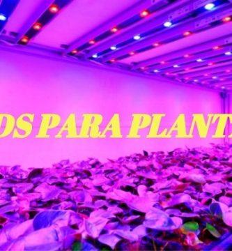 Leds para plantas